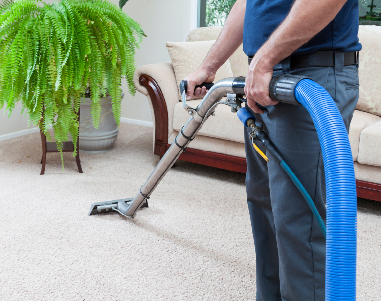 Home domestic carpet cleaning