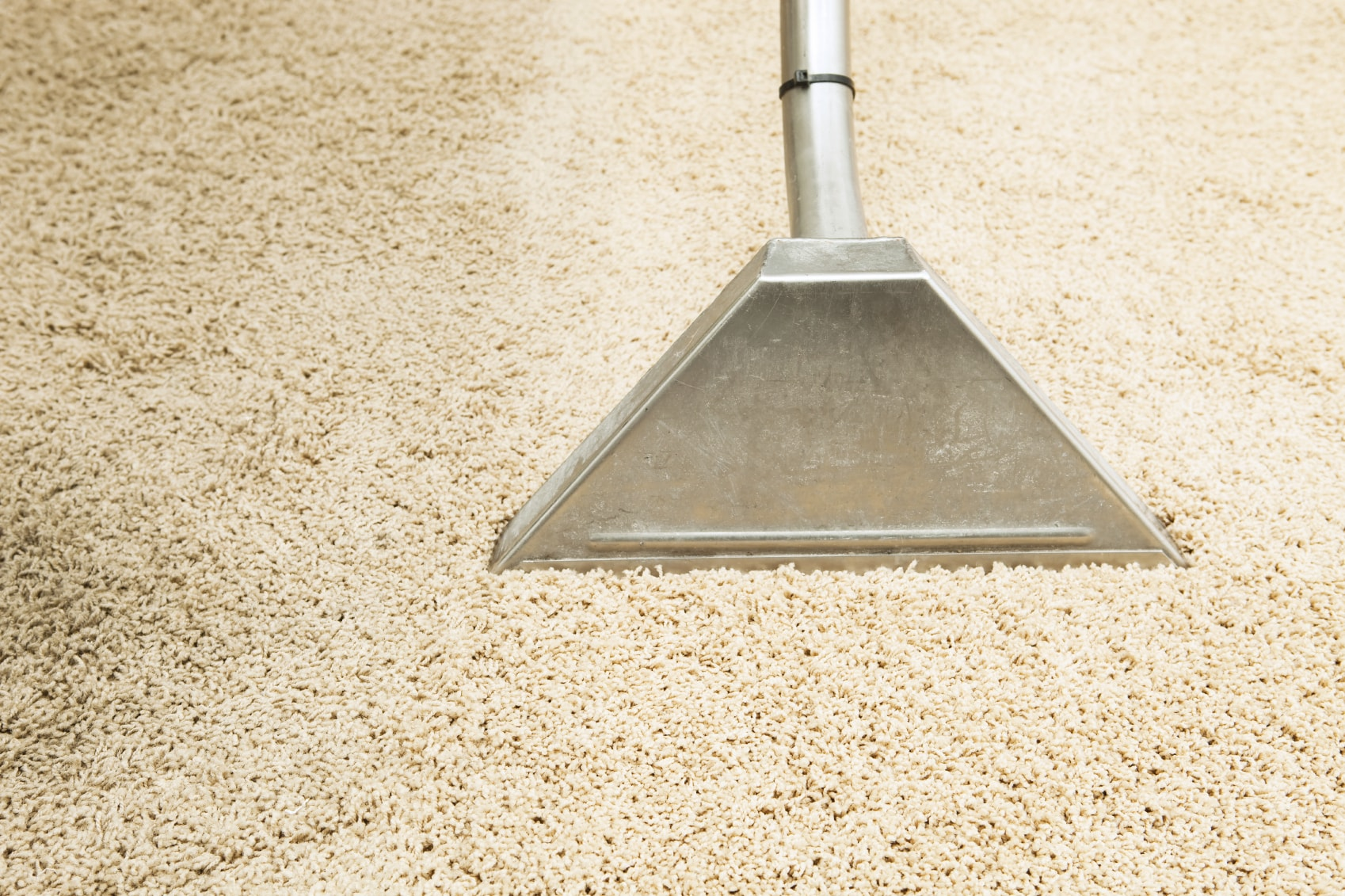 Hot water extraction melborne carpet cleaning
